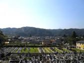 akikawayakushi